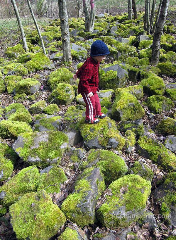mossy-rocks-stephanierosic