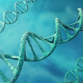 The Truth in Your DNA